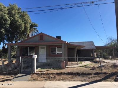 Chandler Single Family Home For Sale: 365 S Hidalgo Road