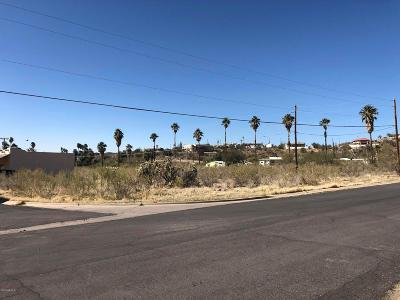 Queen Valley Residential Lots & Land For Sale: 1580 E Queen Valley Drive