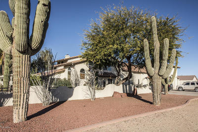 Peoria AZ Single Family Home For Sale: $1,600,000
