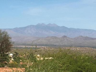 Fountain Hills Residential Lots & Land For Sale: 15522 E Richwood Avenue