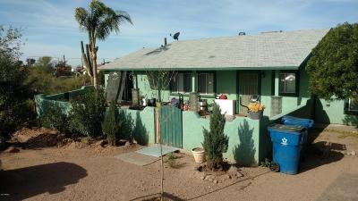 Apache Junction Single Family Home For Sale: 1096 N Shotgun Court