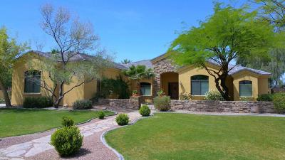Chandler Single Family Home For Sale: 26312 S Washington Street