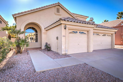 Maricopa County Single Family Home For Sale: 16606 S 15th Street