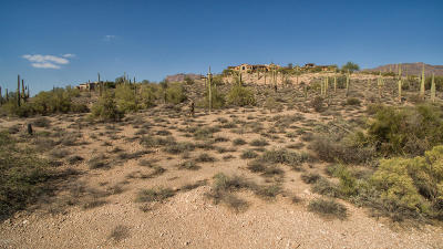 Gold Canyon Residential Lots & Land For Sale: 9264 E Superstition Mountain Drive