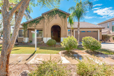 Queen Creek Single Family Home For Sale: 19179 E Sparrow Court