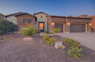 Cave Creek Single Family Home For Sale: 5430 E Palo Brea Lane