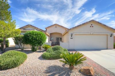 Casa Grande Single Family Home For Sale: 2375 E Durango Drive