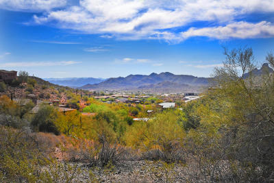 Fountain Hills Residential Lots & Land For Sale: 15845 E Fire Rock Country Club Drive