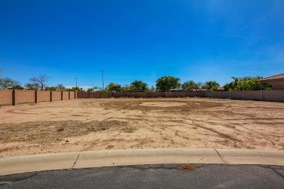 Gilbert Residential Lots & Land For Sale: 3179 E Bonanza Court