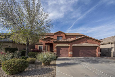 Queen Creek Single Family Home For Sale: 1674 W Agrarian Hills Drive