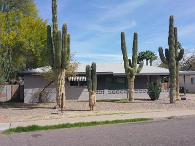Phoenix Single Family Home For Sale: 2445 N 38th Street
