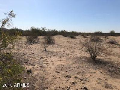 Peoria Residential Lots & Land For Sale: 7827 W Pinnacle Peak Road