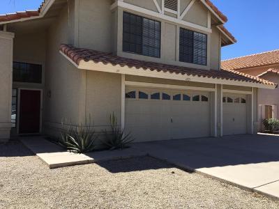 Tempe Single Family Home For Sale: 1221 E Drake Drive