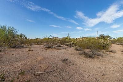 Mesa Residential Lots & Land For Sale: 7428 E Mallory Street