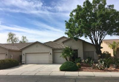 Avondale Single Family Home For Sale: 12937 W Flower Street