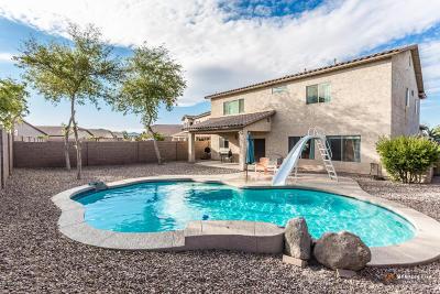 Maricopa Single Family Home For Sale: 43995 W Adobe Circle