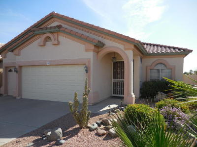 Surprise Single Family Home For Sale: 11663 W Cholla Court