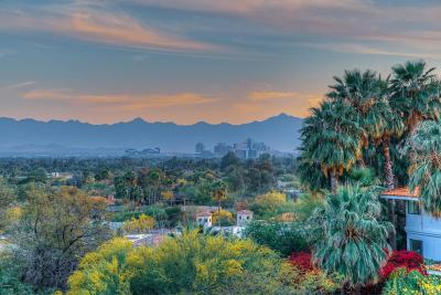 Paradise Valley Residential Lots & Land For Sale: 6113 N 42nd Street