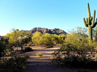 Apache Junction Residential Lots & Land For Sale: ----- E Whiteley Street