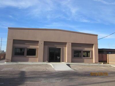 Phoenix Commercial For Sale: 1346 W Grant Street