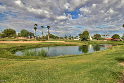Sun City West Rental For Rent: 20806 N Desert Sands Drive
