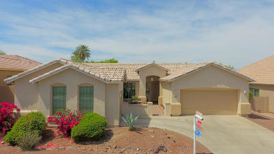 Phoenix Single Family Home For Sale: 9612 S 26th Lane