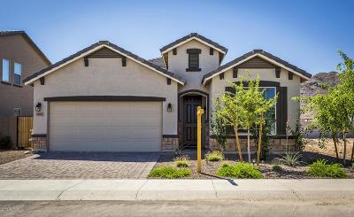 Buckeye Single Family Home For Sale: 2068 N 212th Lane