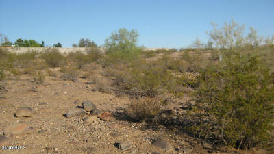 Peoria Residential Lots & Land For Sale: 10500 W Pinnacle Peak Road