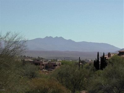 Fountain Hills Residential Lots & Land For Sale: 9142 N Hummingbird Trail