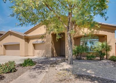 Mesa Single Family Home For Sale: 11356 E Solina Circle
