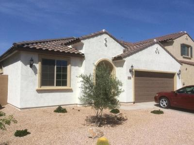San Tan Valley Single Family Home For Sale: 1052 W Danish Red Trail