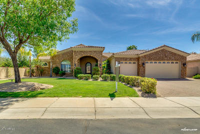 Chandler Single Family Home For Sale: 941 E Kaibab Place