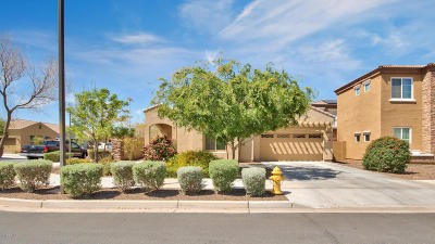 Queen Creek Single Family Home For Sale: 21664 S 215th Place