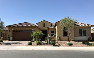 Gilbert Single Family Home For Sale: 2865 E Bellerive Drive