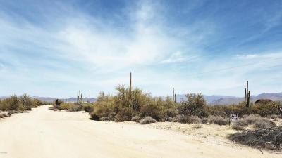 Rio Verde Residential Lots & Land For Sale: N 168th Place
