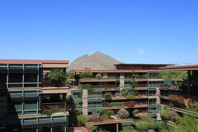 Scottsdale Apartment For Sale: 7137 E Rancho Vista Drive #7008