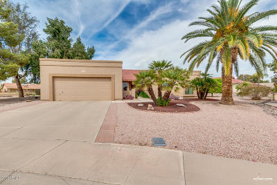 Mesa Single Family Home For Sale: 2307 Leisure World