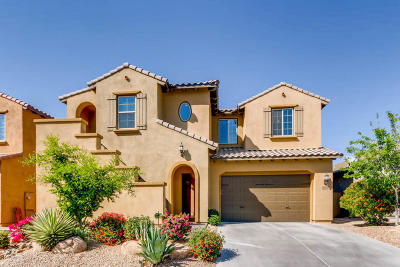 Phoenix Single Family Home For Sale: 3774 E Ringtail Way