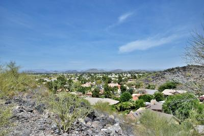 Phoenix Residential Lots & Land For Sale: 14801 N 15th Drive