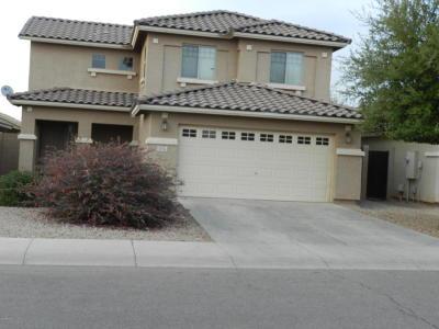 San Tan Valley Single Family Home For Sale: 3556 E Del Rio Drive