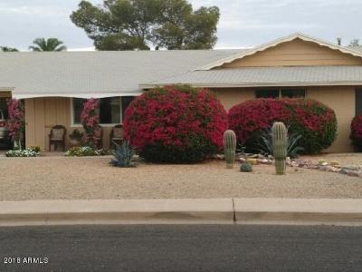 Sun City Single Family Home For Sale: 10932 W Sun City Boulevard