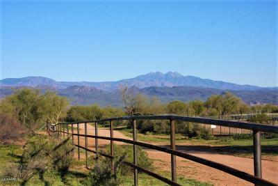 Scottsdale Residential Lots & Land For Sale: 157xx E Morning Vista Lane