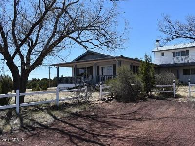 Show Low Single Family Home For Sale: 1060 Lone Pine Dam Road