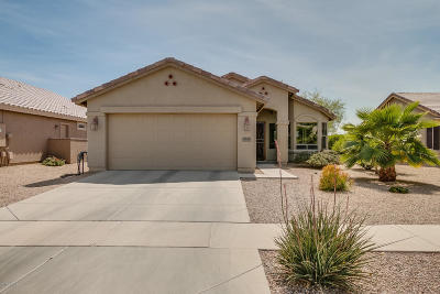Casa Grande Single Family Home For Sale: 2597 E Santa Maria Drive