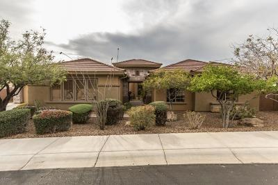 Anthem Single Family Home For Sale: 41910 N Congressional Drive