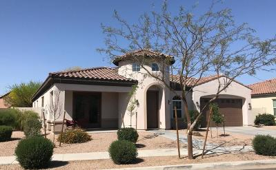Queen Creek Single Family Home For Sale: 22166 E Cherrywood Drive