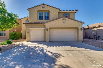 Maricopa Single Family Home For Sale: 21536 N Denton Drive