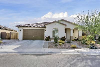 San Tan Valley Single Family Home For Sale: 41139 N Laurel Street