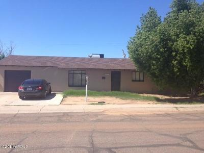 Phoenix Single Family Home For Sale: 4022 N 55th Drive
