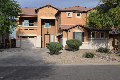 San Tan Valley Single Family Home For Sale: 34489 N Vidlak Drive